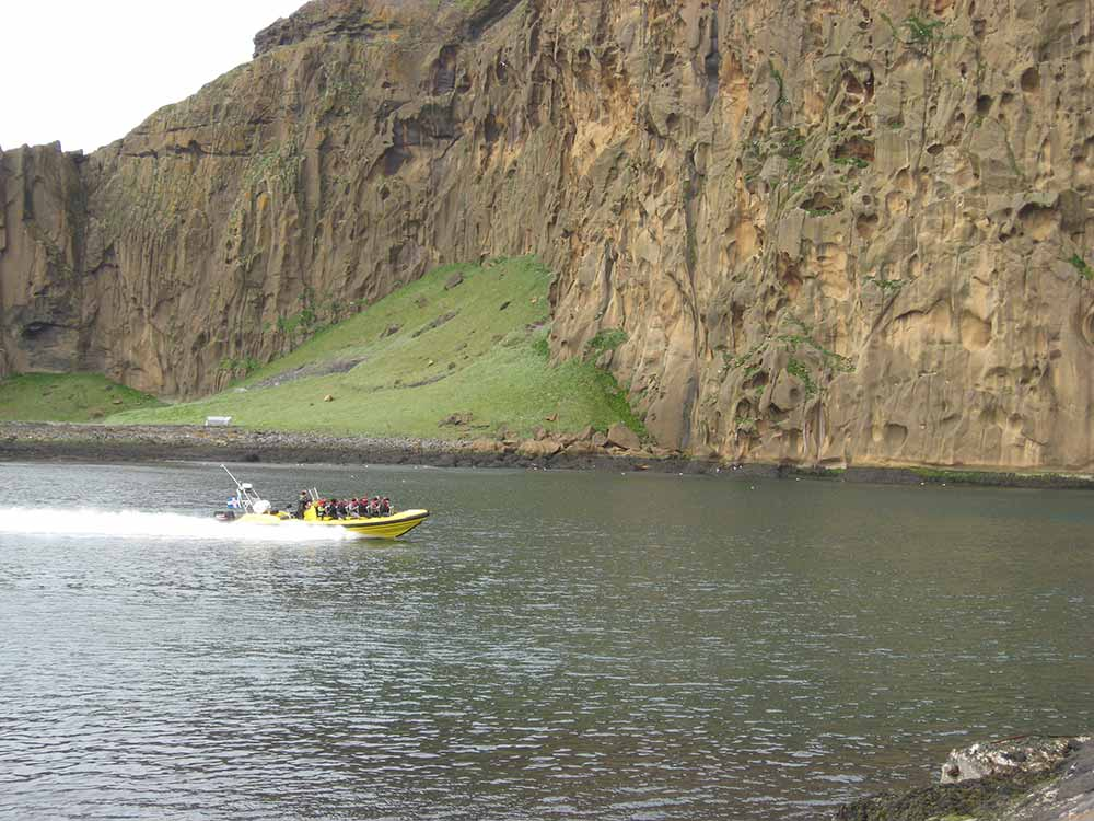 Rib safari boat tour in Westman Islands