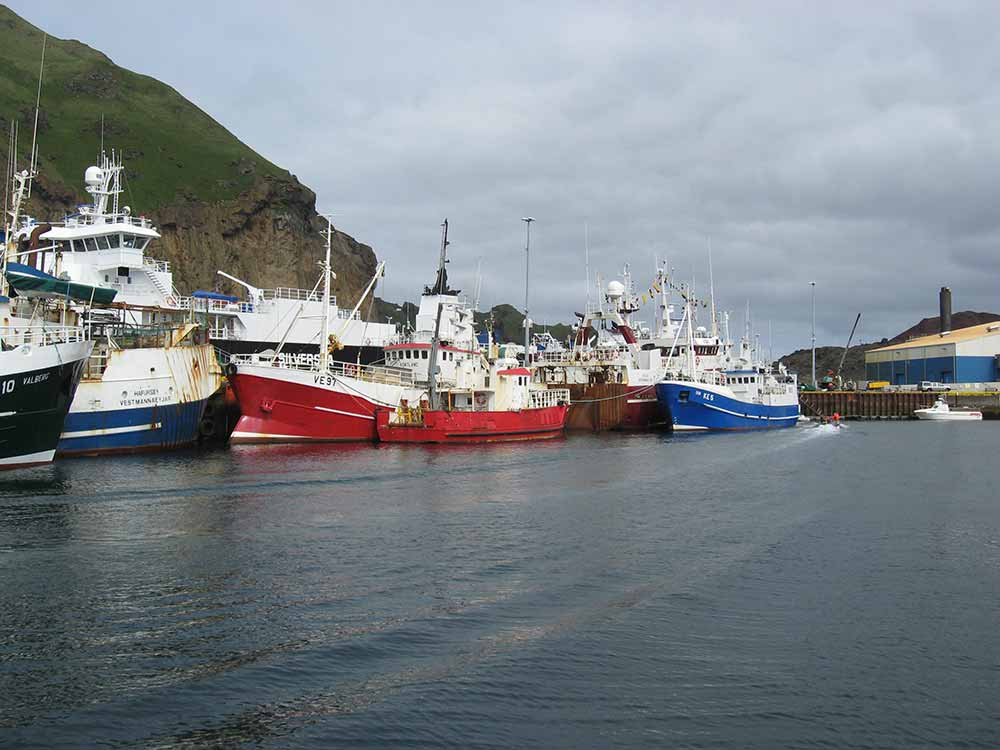 The harbor in Westman Islands